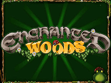 Enchanted Woods на деньги